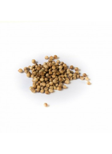 Coriandre, ingrédient du mélange 5 BAIES
